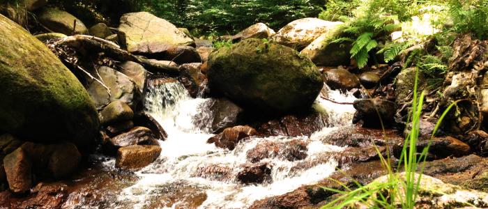 Harz bild wasserfall bearb
